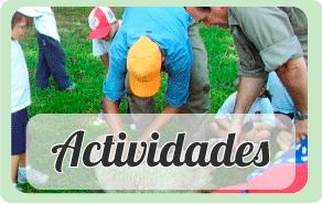 banner-actividades
